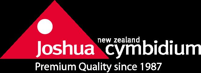 Joshua Cymbidium